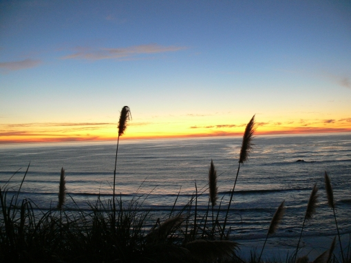 beach grass sunset1